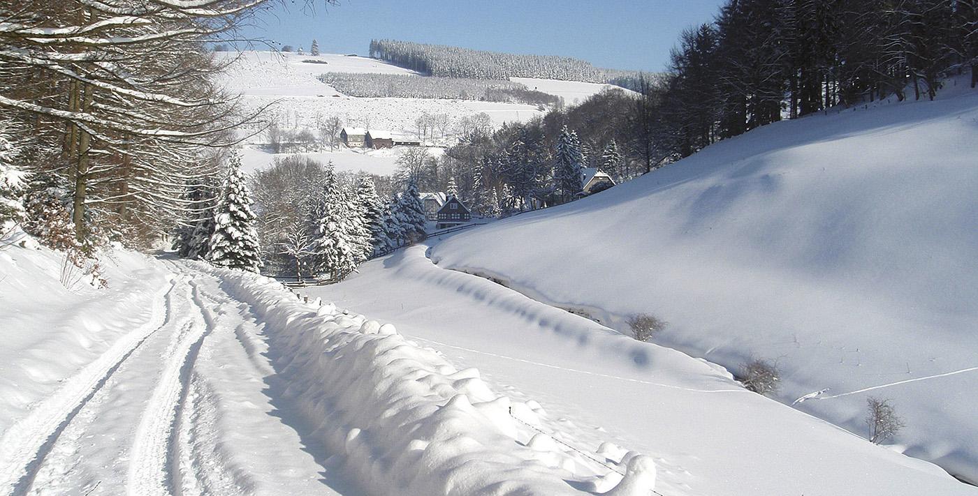 Winterberg Winterwandern